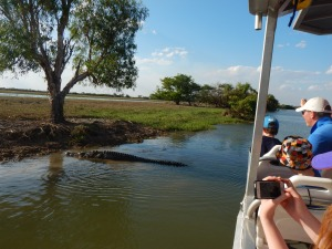 Crocodiles everywhere!! Yellow Water Billabong
