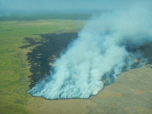 A wildfire in Kakadu National Park