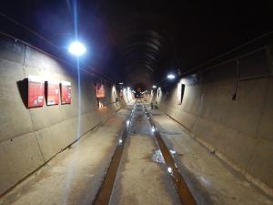Darwin tunnell DSCN3053