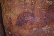 9 Echidna Rock art