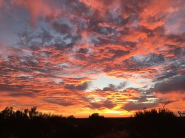 ARP Sunset.jpg